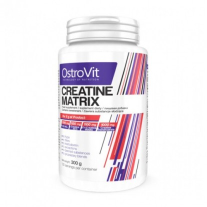 Креатины/creatine Ostrovit Creatine Matrix 300 g фото