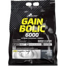 Gain Bolic 6000 bag 6800 g Olimp